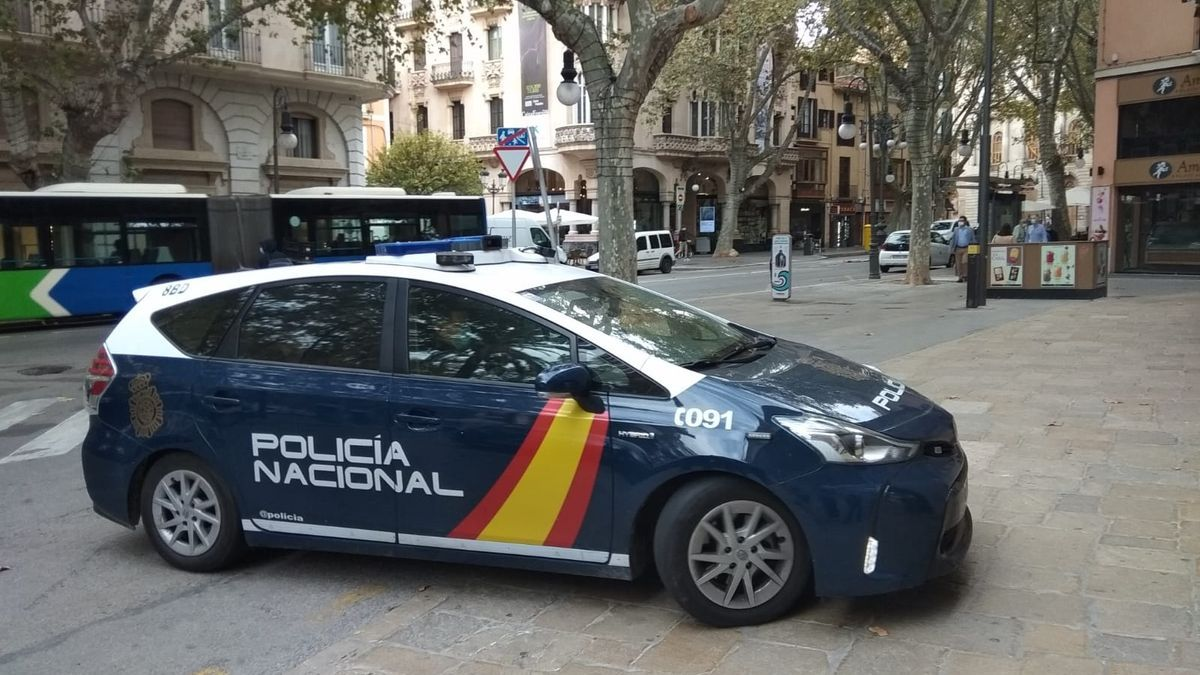 La Policía Nacional ha investigado los sucesos desde el pasado mes de enero.