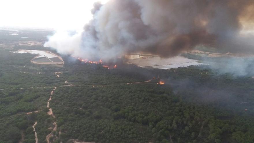 Declarado un incendio forestal en un paraje de Moguer
