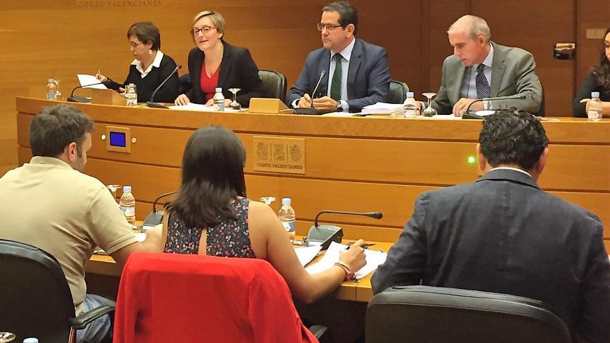 La consellera María José Salvador comparece en la comisión de presupuestos de las Corts