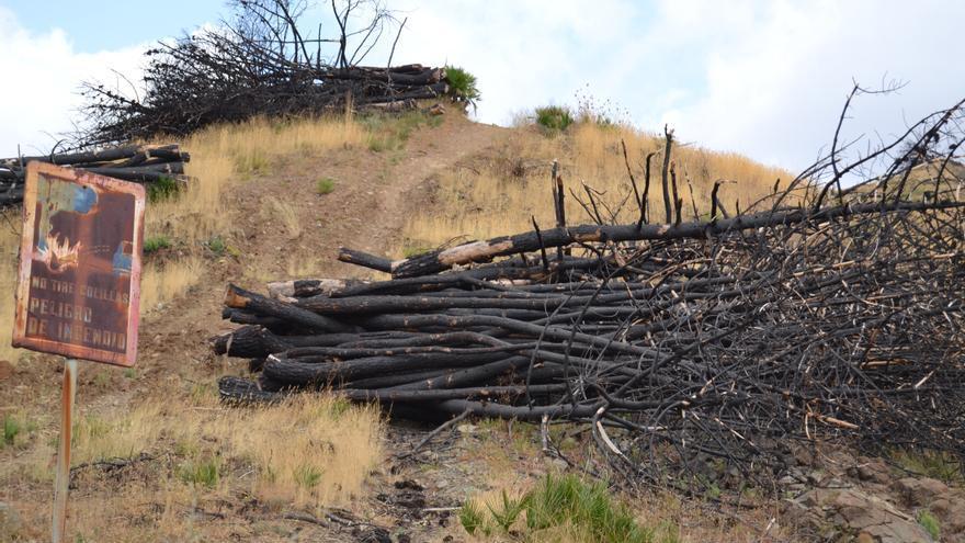 Montes del municipio de Ojén calcinados tras el mayor incendio de la Costa del Sol