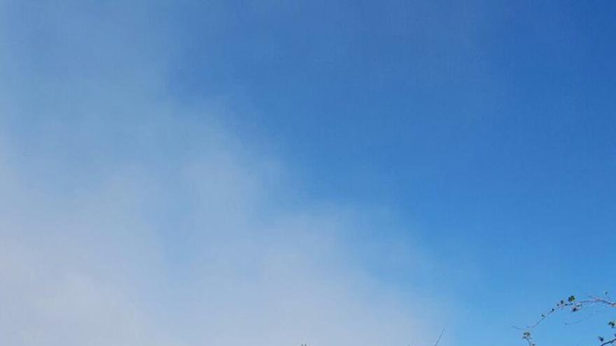 Incendio en la zona de la antigua central lechera de Las Palmas de Gran Canaria.