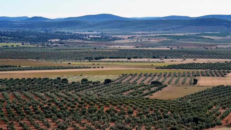 Zona afectada por el proyecto de extracción minera en Campo de Montiel