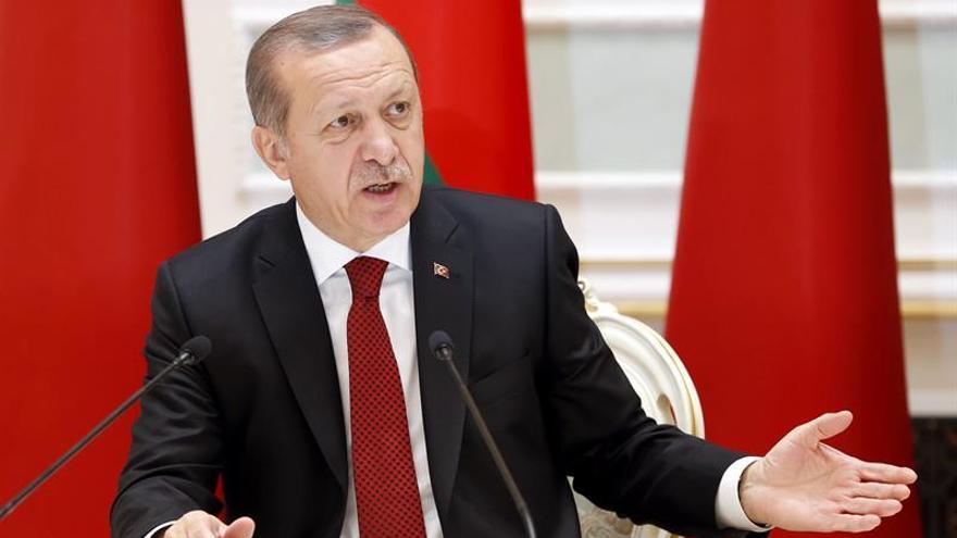 Erdogan dice que la intervención turca de Siria sólo busca acabar con Al Asad