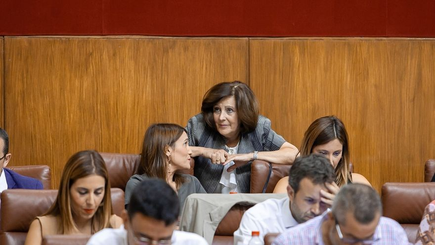 El Parlamento aprueba la nueva Ley de Igualdad de Andalucía, que cuenta con los votos en contra de Podemos e IU