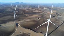 Cinco experiencias desde Andalucía para la Cumbre del Clima