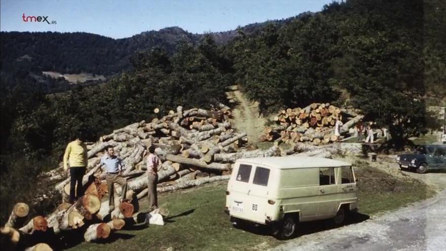 Fotografía de denuncia por la deforestación de los bosques de Cantabria en 1971. | MANUEL DE COS