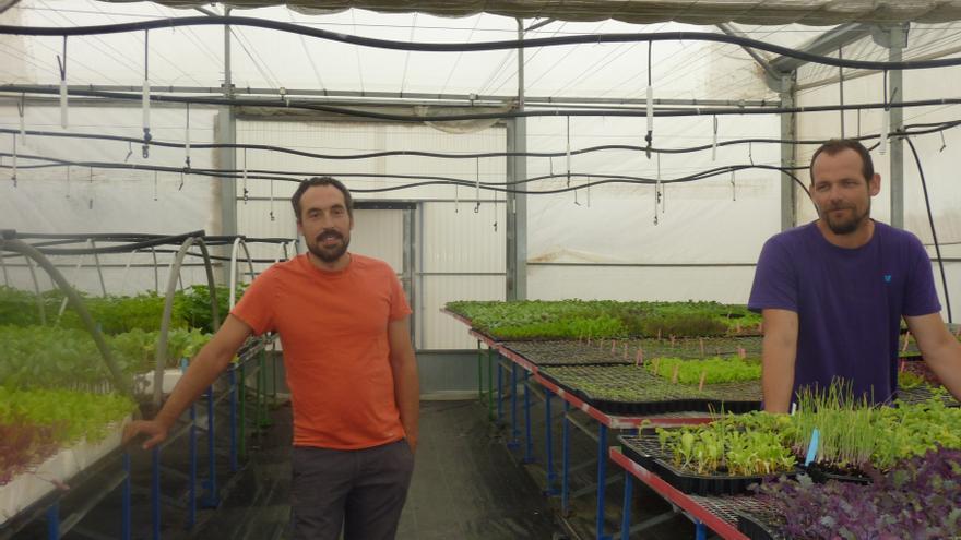 Rafael, ingeniero agrónomo, y Javier, biólogo, pusieron en marcha su vivero hace cinco años