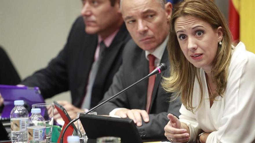 La consejera de Hacienda del Gobierno de Canarias, Rosa Dávila, durante su comparecencia en comisión parlamentaria para explicar el proyecto de ley de presupuestos generales de la comunidad autónoma para 2016. EFE/Cristóbal García