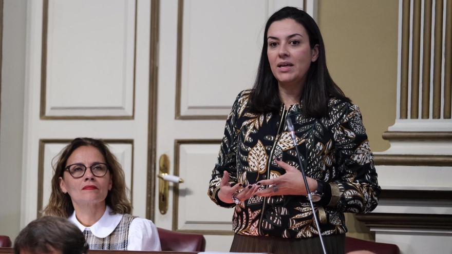 Matilde Fleitas, diputada  del PSOE por La Palma en el Parlamento de Canarias.