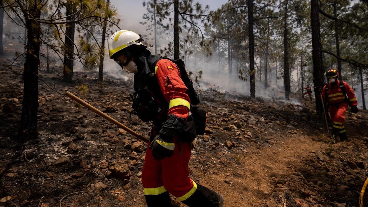 Miembros de la UME, trabajando en la extinción del fuego en Arico, Tenerife, que entró en el Parque Nacional del Teide