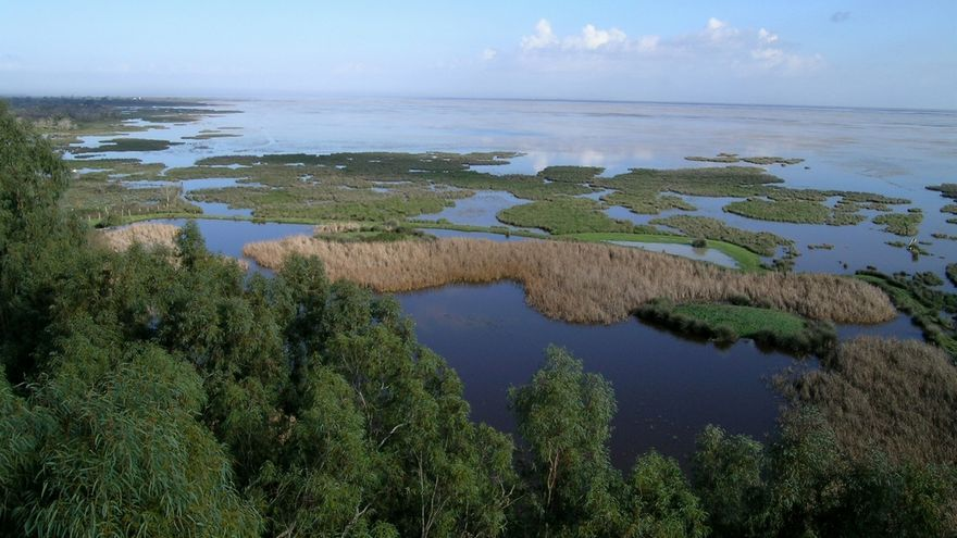 Vista del P.N. de Doñana.
