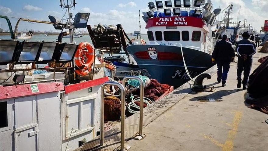 El cerco vuelve al Golfo en busca de boquerones y con las sardinas vetadas