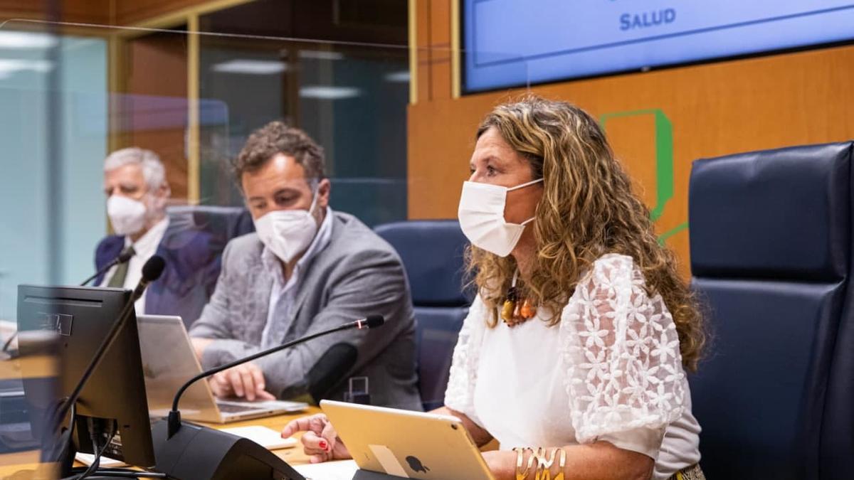 La consejera de Salud, Gotzone Sagardui, este miércoles en el Parlamento