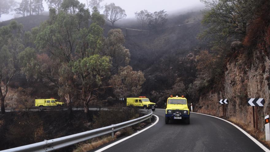 Despliegue terrestre para ayudar a controlar y extinguir el incendio de Gran Canaria. (Ángel Sarmiento).