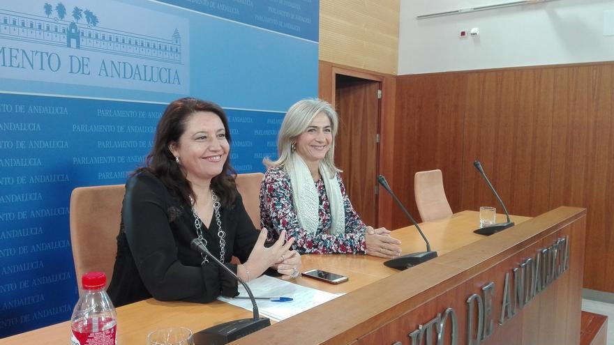 """PP andaluz responde a las declaraciones de Cifuentes: """"En España nadie le regala nada a nadie"""""""