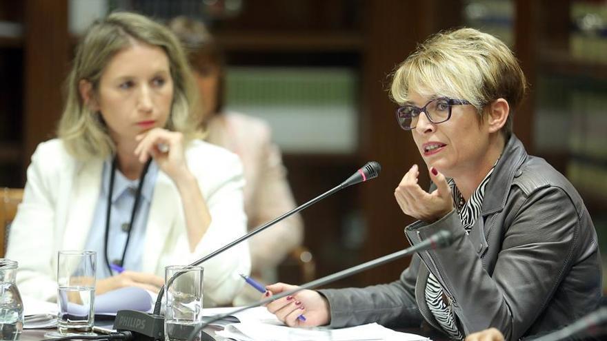 La consejera de Economía, Conocimiento y Empleo del Gobierno de Canarias, Elena Máñez. EFE/ Cristóbal García