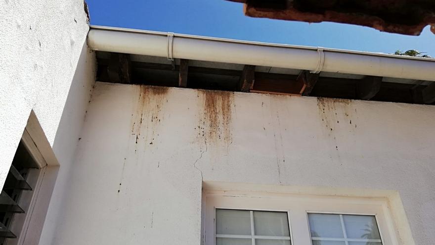 Humedad y mal estado de conservación del edificio, sito cerca de la plaza del Cristo, en la ciudad de Aguere