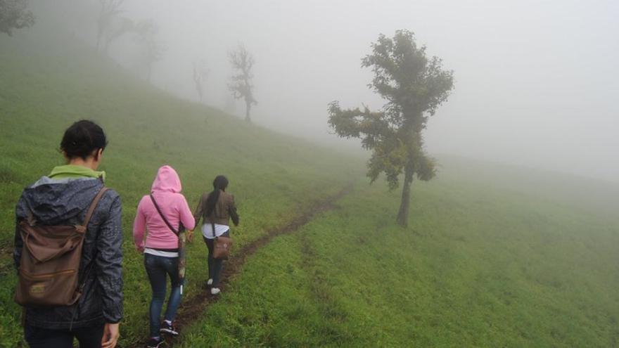 Neblina  en La Patasta, Las Sabanas / JCD