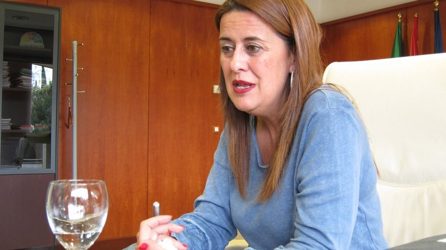 Gaya y Cousinou se incorporan a la candidatura municipal del PSOE y no repiten Castreño ni Castillo