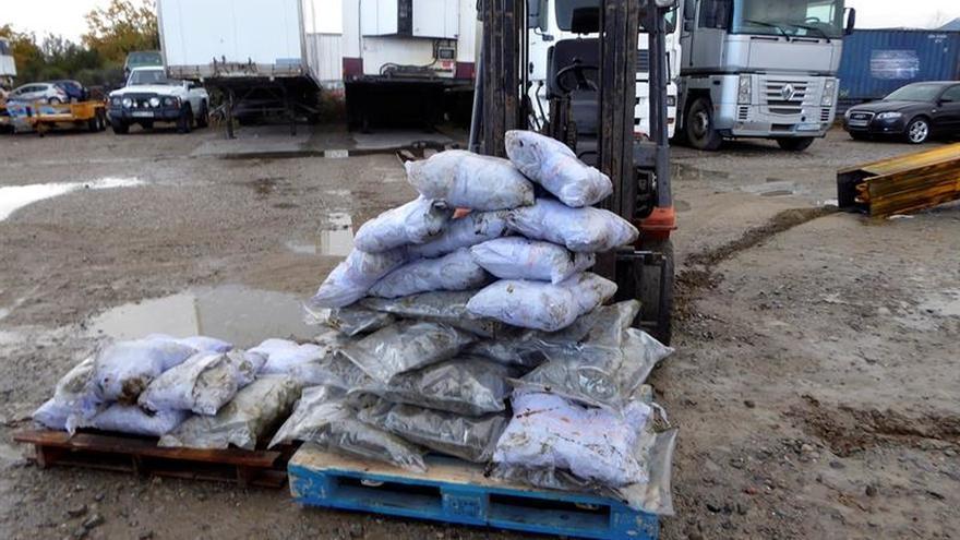 Francia intercepta 1,3 toneladas de cannabis en un camión procedente de España
