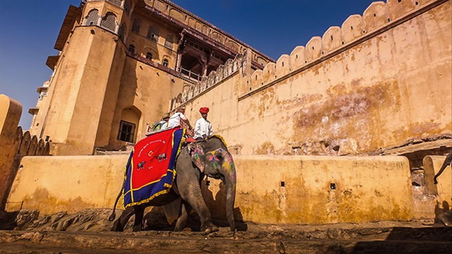 Elefante en Fuerte de Amber, India