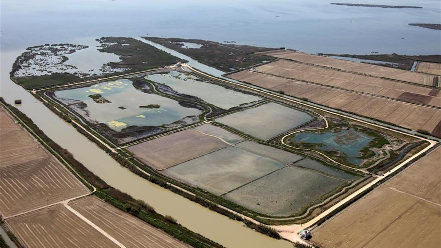 Vista aérea del Tancat de la Pipa y del lago de l'Albufera