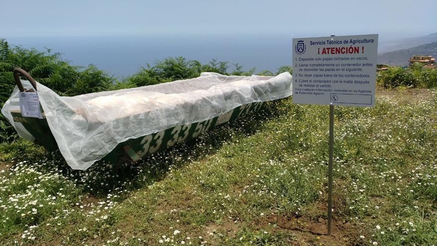 Contenedor localizado en las medianías del norte para el control de la papa afectada
