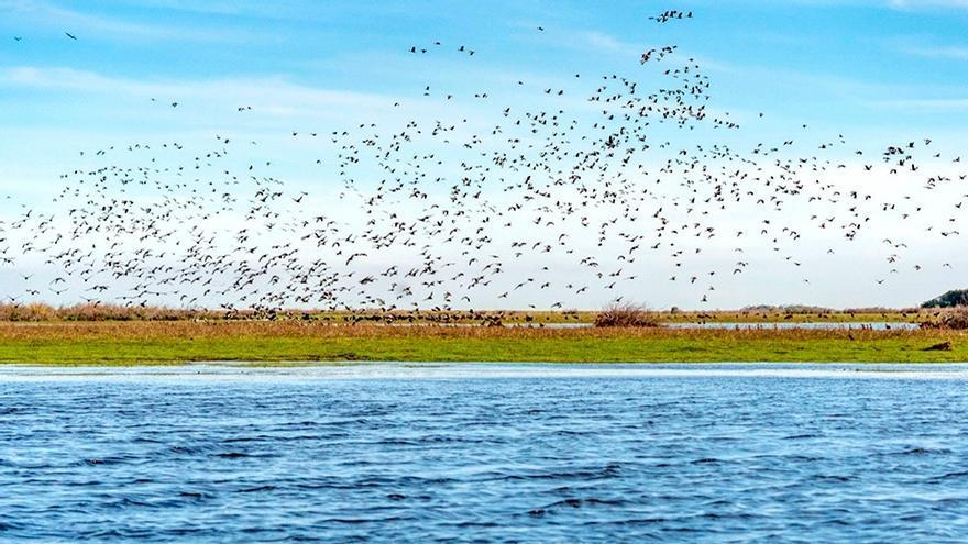 En América Latina se encuentran algunos de los reservorios de agua dulce más grandes del mundo