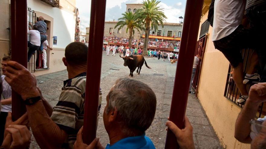 Castilla-La Mancha aumenta el aforo en espectáculos taurinos e implanta inscripción previa para festejos populares