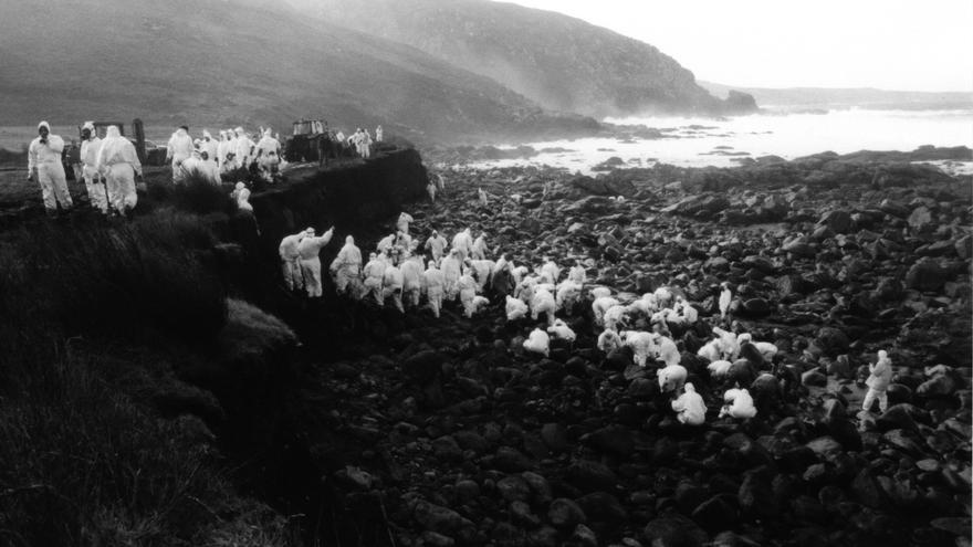 Un grupo de voluntarios limpia la costa de Muxia tras el hundimiento del Prestiga. /Foto:Iñaki Diez.