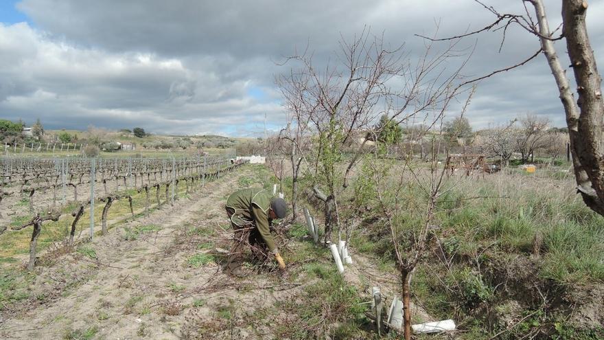 Asaja Málaga reclama que se realicen mejoras de las infraestructuras hidráulicas ante el riesgo de sequía