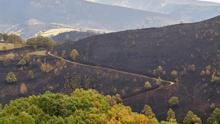 Las 35.500 hectáreas quemadas en Galicia en la ola de incendios avanzan el peor balance desde 2006