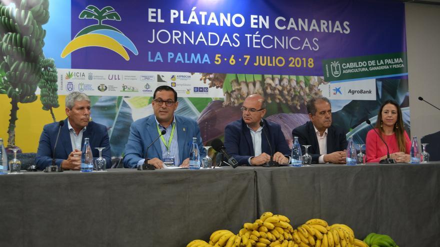 Inauguración de las jornadas técnicas del plátano.