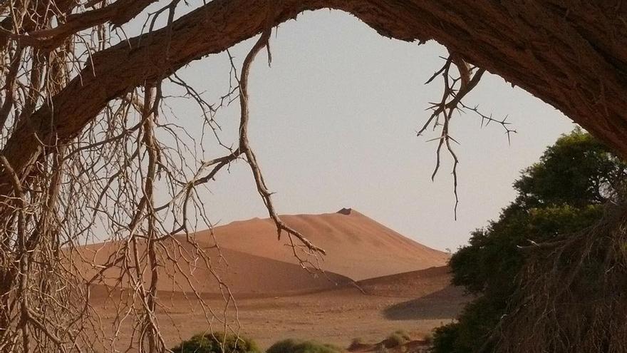 Paraje solitario en el desierto de Sahara