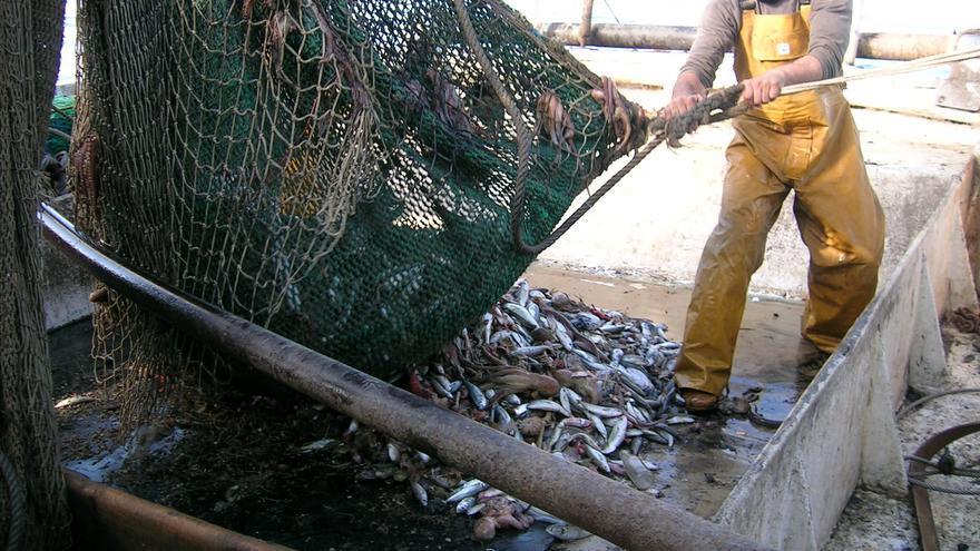 Pesca de arrastre.