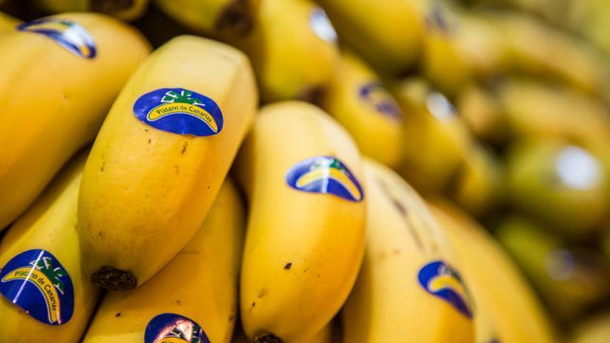 Manillas de plátanos de Canarias