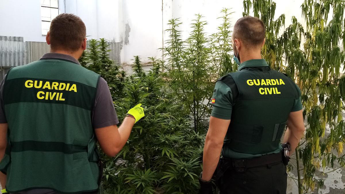 Dos agentes de la Guardia Civil con la marihuana recuperada
