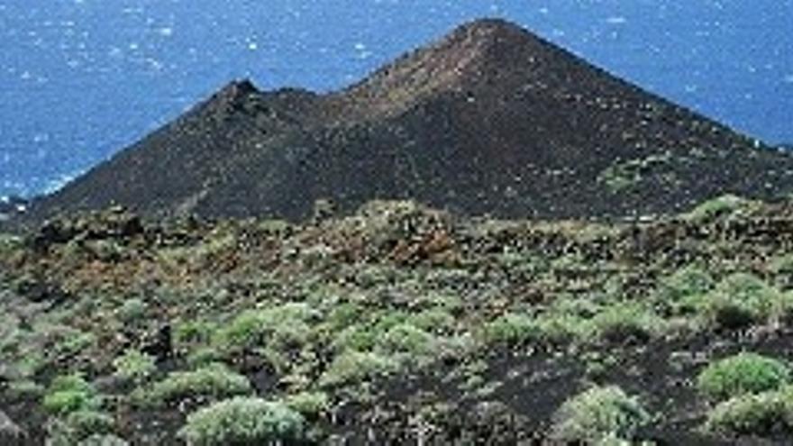 El 31% de la Isla está en riesgo de desertificación