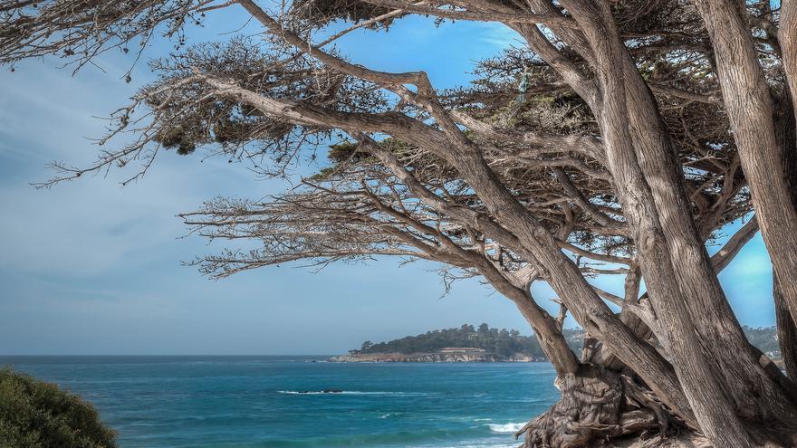 Carmel-by-the-sea. Foto: Flickr