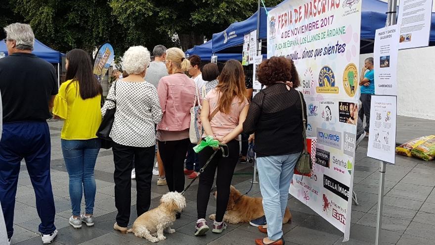 Participantes en la I Feria de Mascotas de Los Llanos.