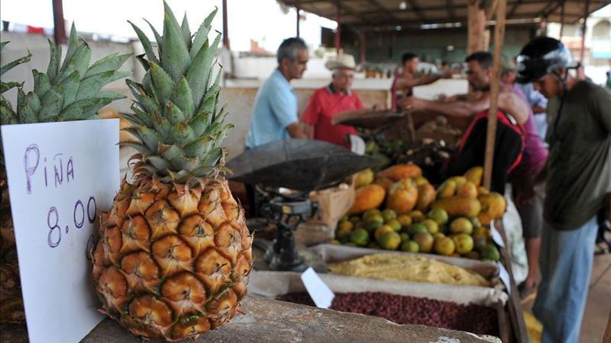 Las medidas para abaratar los productos agrícolas en Cuba no dan el resultado previsto