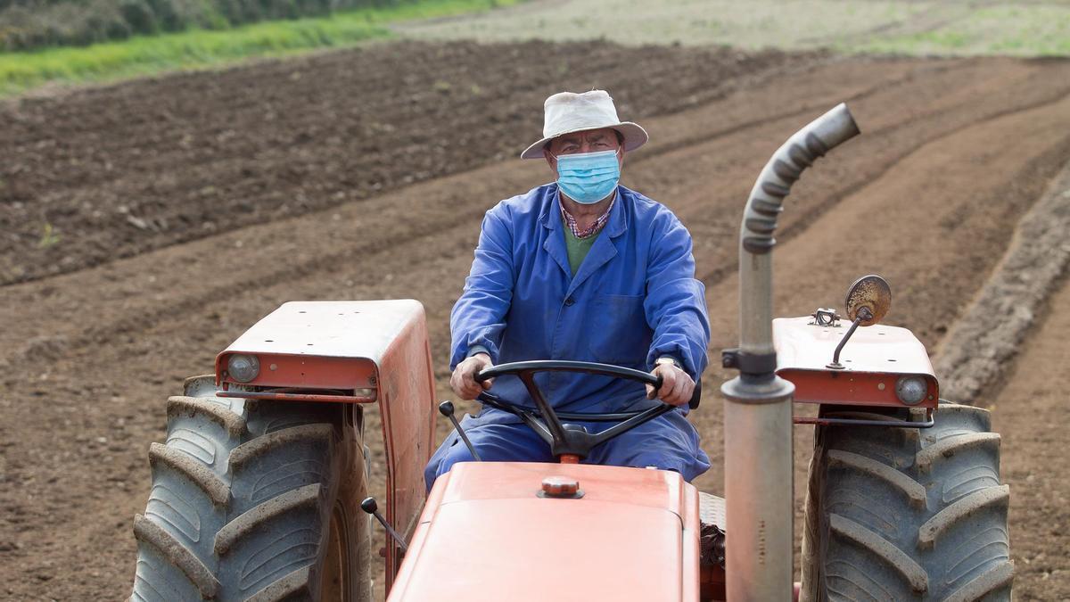 Agricultor en sus tierras