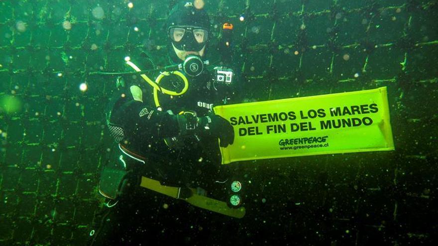 """Greenpeace advierte riegos de """"guetos submarinos"""" de la industria salmonera"""