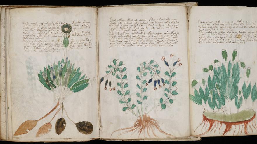 """Manuscrito Voynich, el """"gran reto"""" de la criptografía desde hace 500 años"""