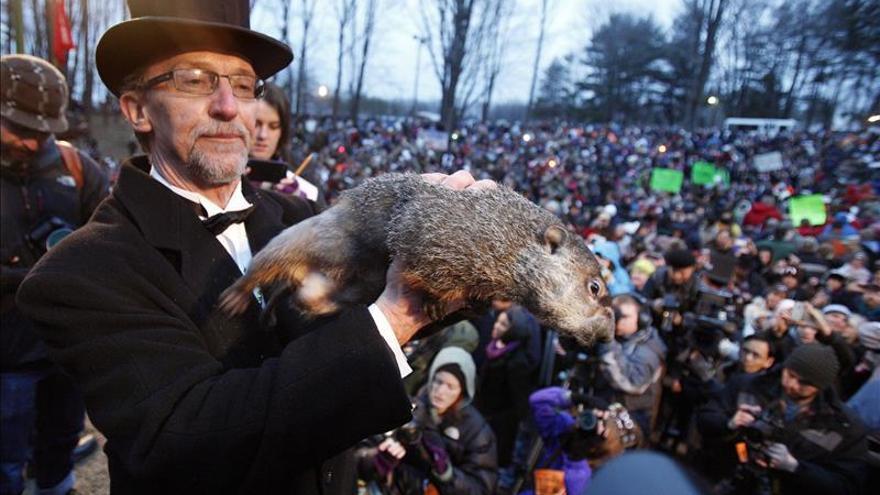 La marmota Phil pronostica un invierno largo en Estados Unidos