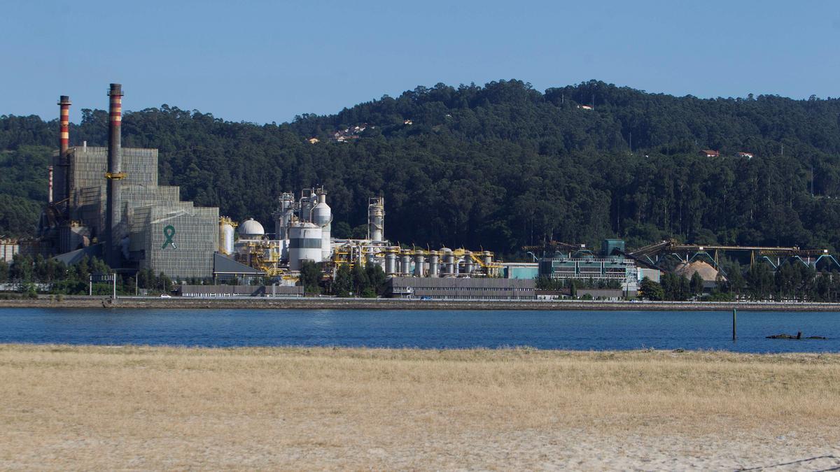Fábrica que Ence tiene en Pontevedra. EFE / Salvador Sas