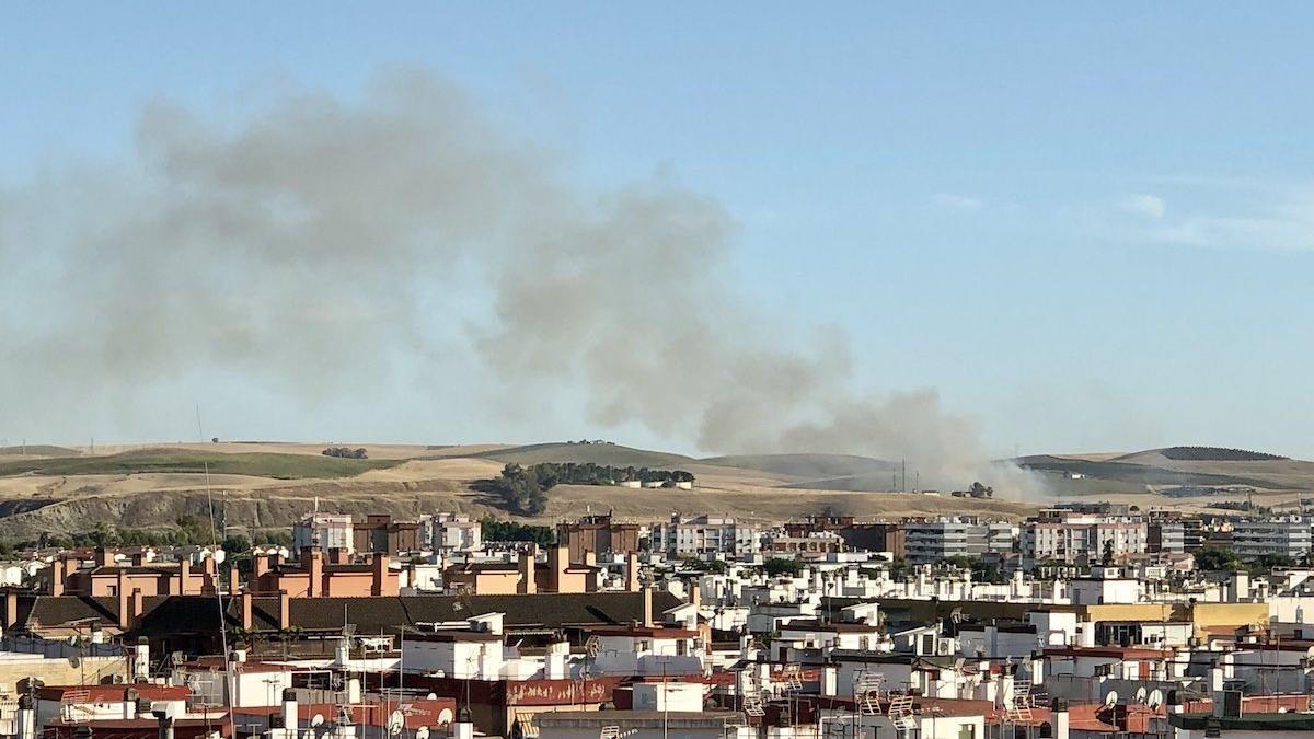 Columna de humo del incendio en la N-432.
