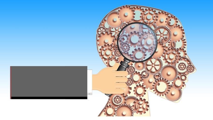El riesgo genético de la esquizofrenia podría no estar relacionado con las estructuras subcorticales del cerebro