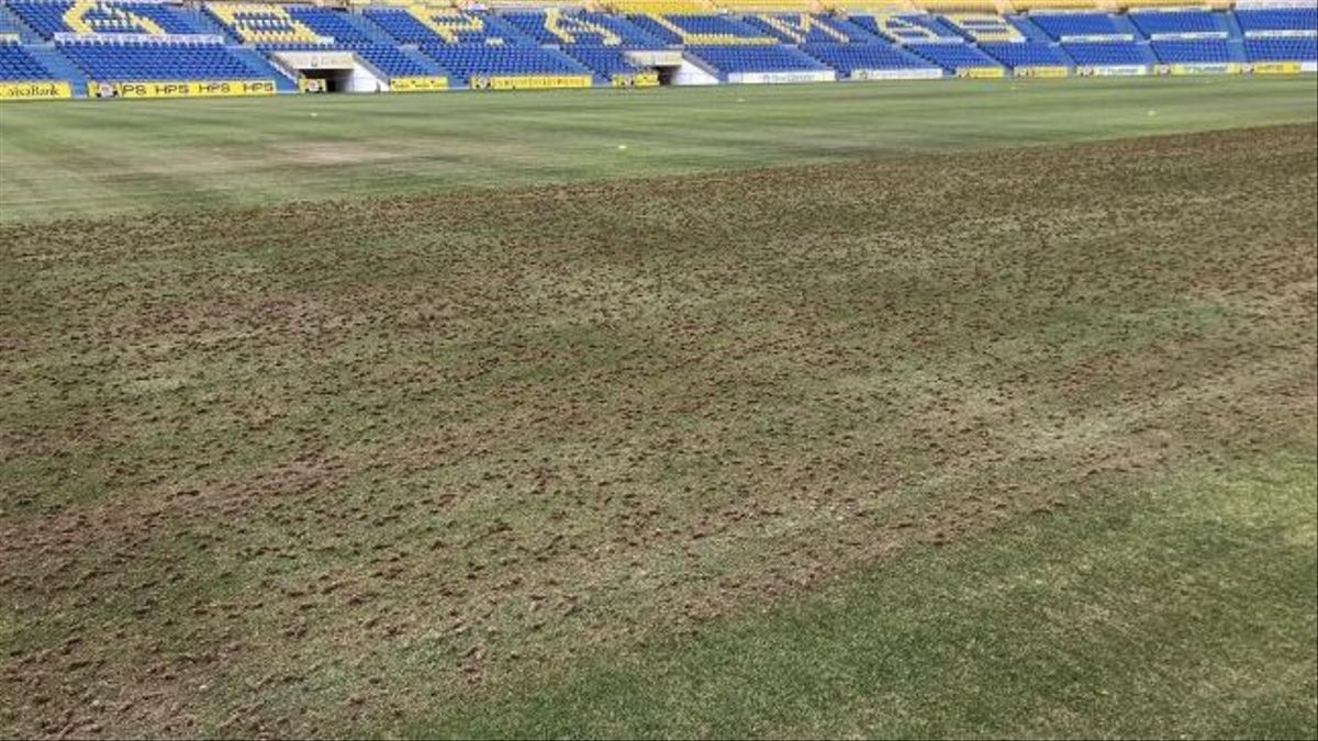 Resiembra del césped del Estadio Gran Canaria