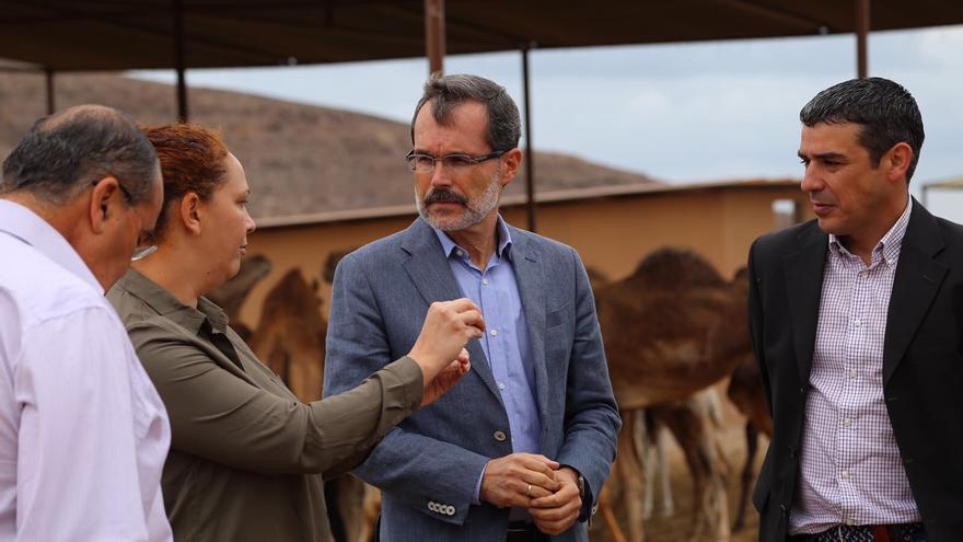 Marcial Morales y Narvay Quintero en la granja de camellas de Oasis Park